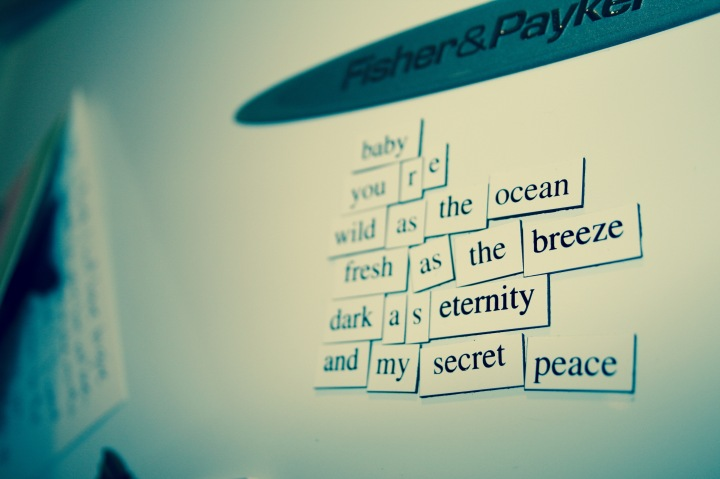 Fridge poetry 2009 - Wild as the Ocean