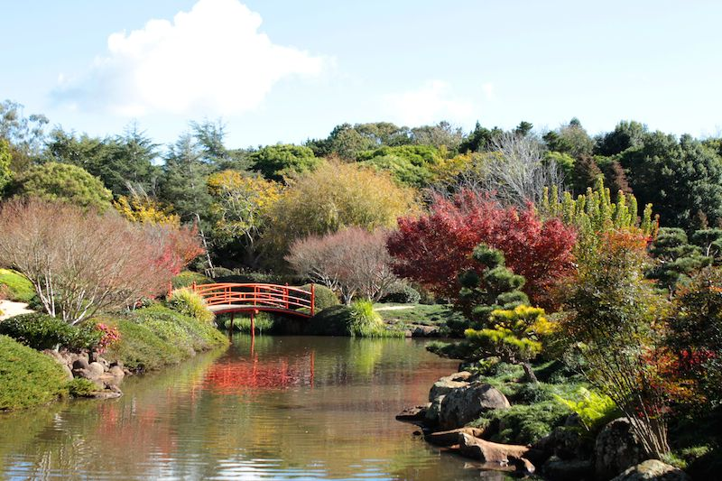 Japanese Garden on the ground of the University of Southern Queensland, Toowoomba