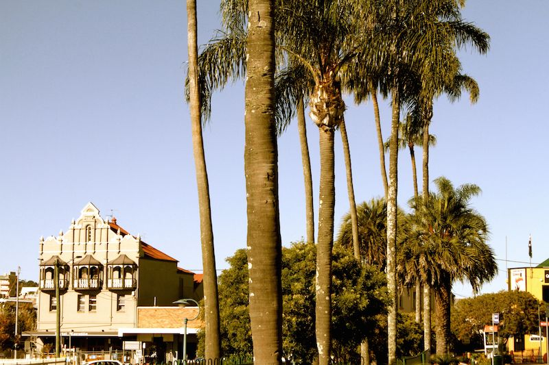 Palm trees and an art deco style buidling, Toowoomba, Queensland