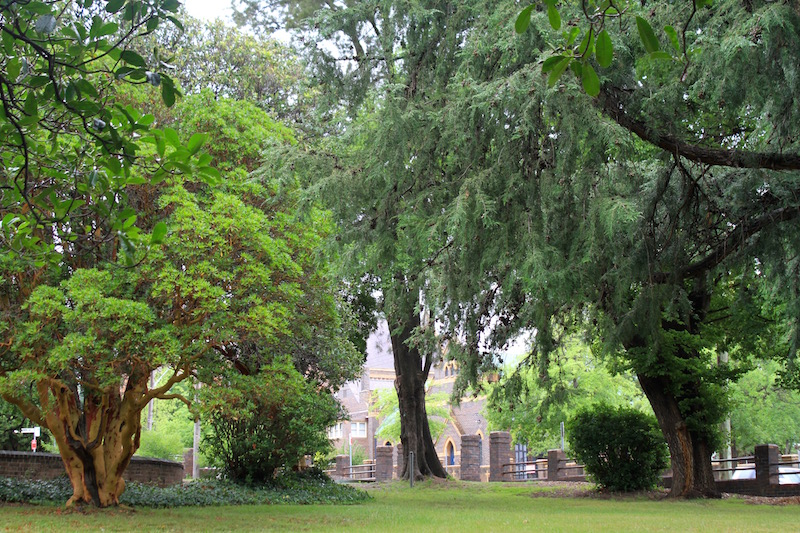 Church grounds in beautiful green Armidale, New South Wales