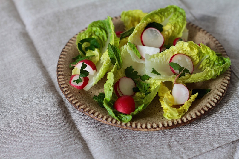 Spring salad with cos lettuce, radishes and herbs