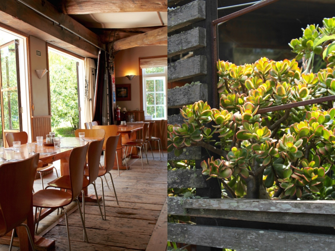 Leigh Sawmill Cafe, Matakana Coast, New Zealand collage