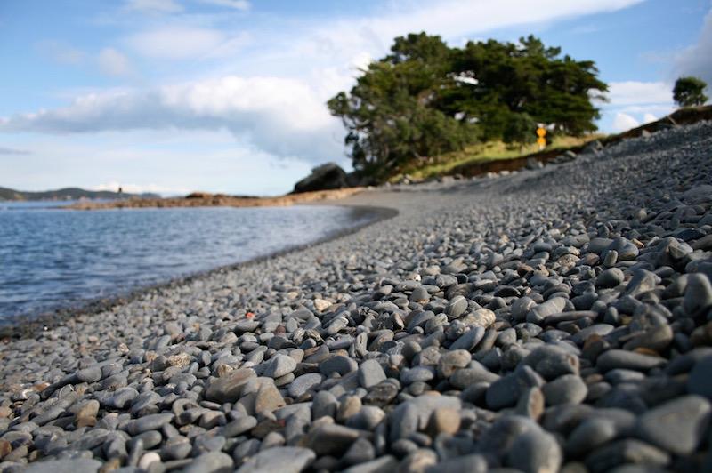 Tawharanui Regional Park, Matakana Coast New Zealand
