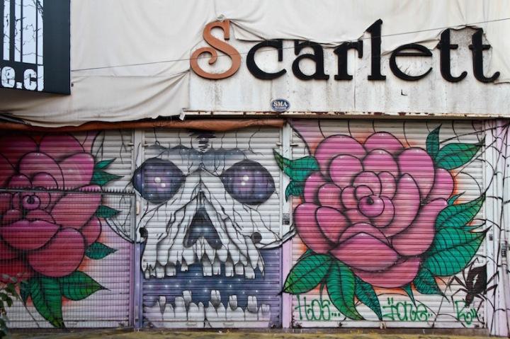 Skull and roses - street art, Bellavista, Santiago Chile