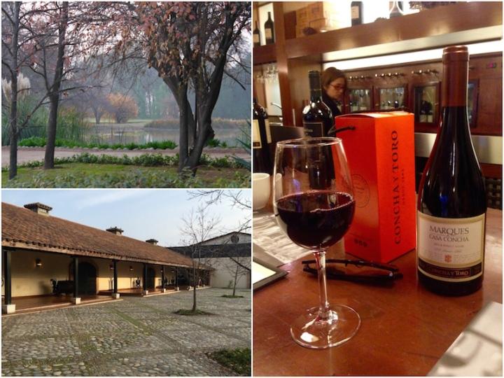 concha-y-toro-winery-close-to-santiago-chile