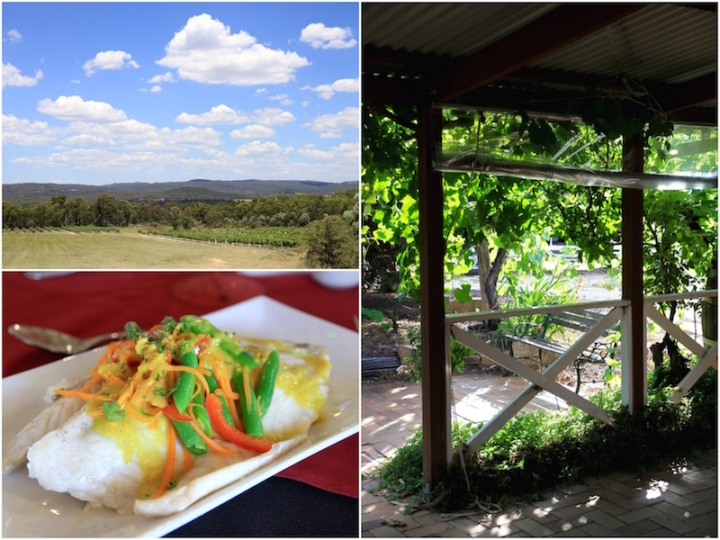 Winery tour in Stanthorpe, Queensland Australia
