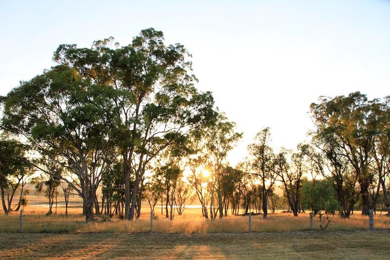 At dawn, Stanthorpe, Southern Queensland, Australia