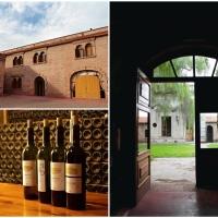 Mendoza, Argentina | Wine + Road Trip