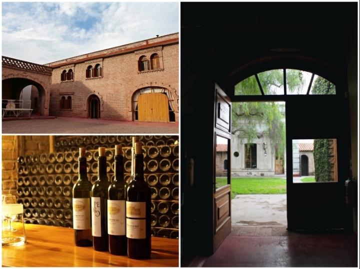 Wine tasting at Weinert winery in Mendoza