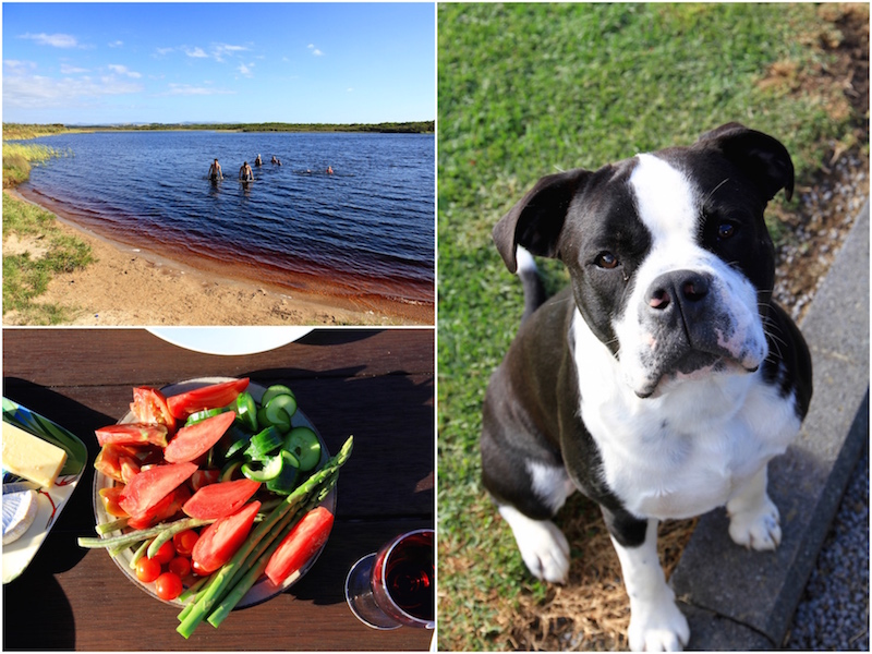 Coca Cola Lakes, Mum's vegetables and Loki the dog - January 2017