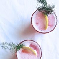 Rhubarb & Fennel Fizz (+ blog rant)