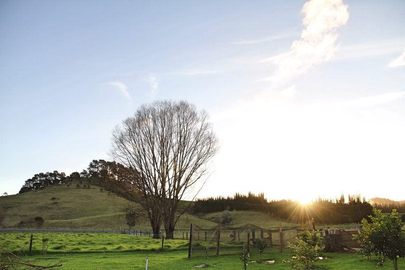 Winter sunset at home, Far North New Zealand