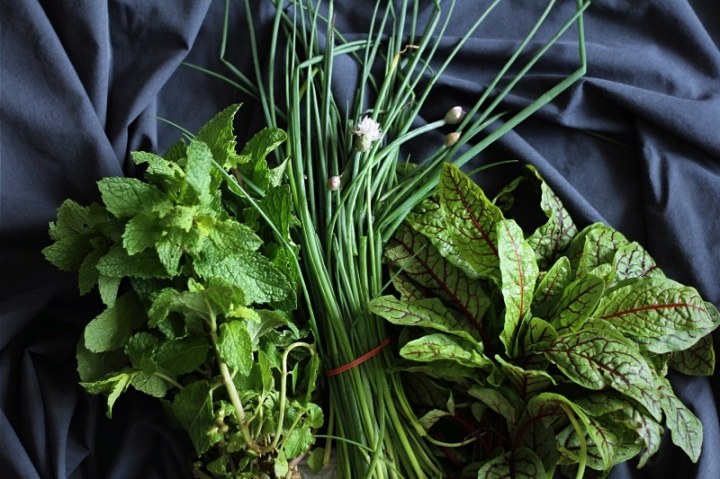 Soft fresh herbs for chopping, sprinkling and mixing with cream cheese